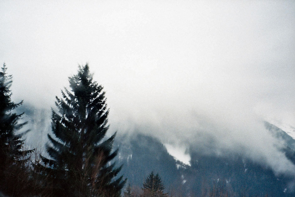 Firs, mountains and storm