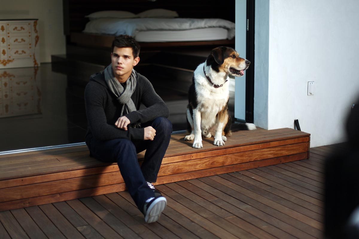 Taylor Lautner Orange Los Angeles Ilk